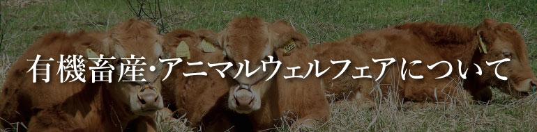 有機畜産・アニマルウェルフェアについて