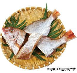 五島列島の煮魚・焼魚用パック